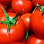トマトのレシピ☆人気があって美味しくて簡単なものってある?